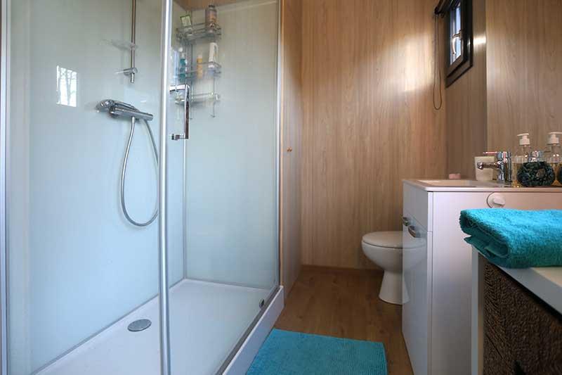 salle de bain douche suite chambre