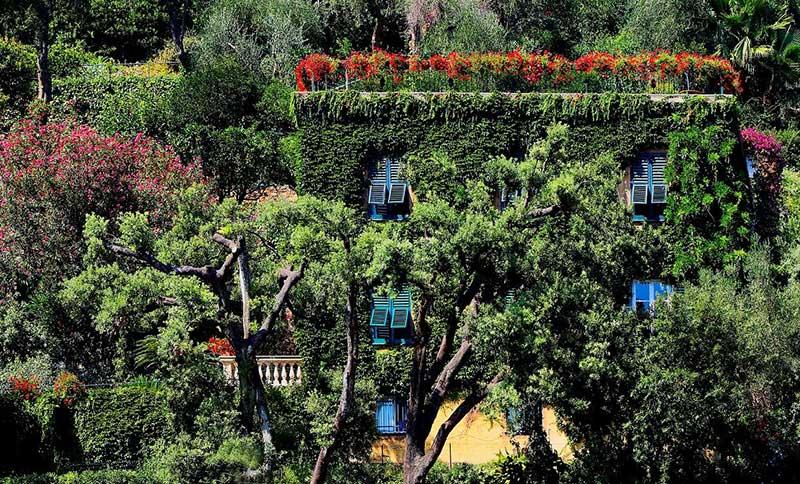 vue jardin maison