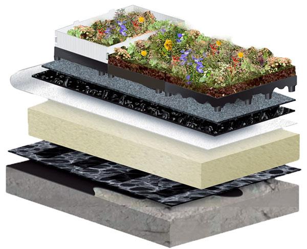 Composition de la toiture végétalisée